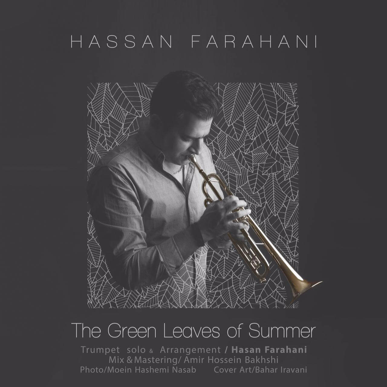 hassan-farahani-the-green-leaves-of-summer